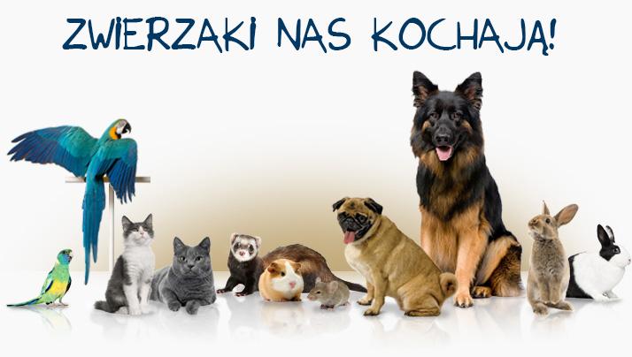 Zwierzaki nas kochają!